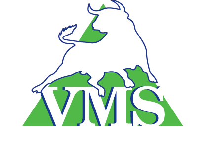VMS Consulting